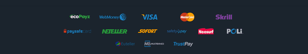 ZigZagSport payment options